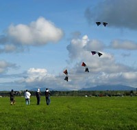 people-flying-kite.jpg