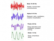 alpha beta theta delta brain wave chart